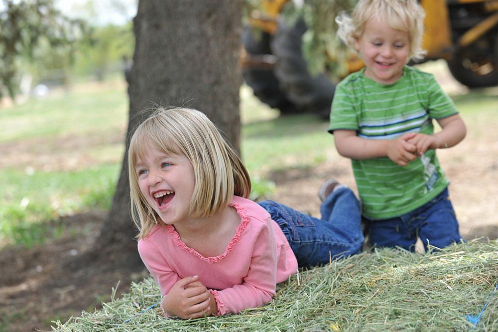 Bauernhofurlaub Bayerischer Wald - Bauernhöfe in Bayern für einen Urlaub mit Kinder.